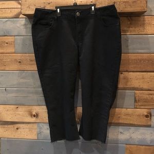 Lee Ryder brand ankle pants. Size 18.